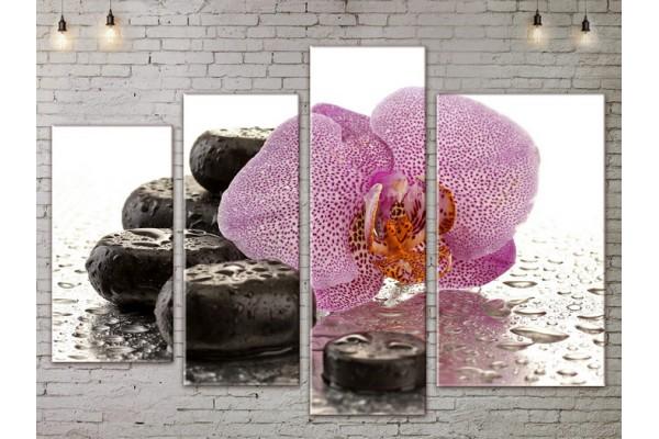 Модульная картина, из четырех сегментов со скидкой до -40%, ArtDM0077