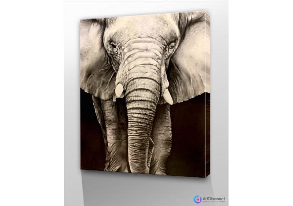 Картины животных AANL0003