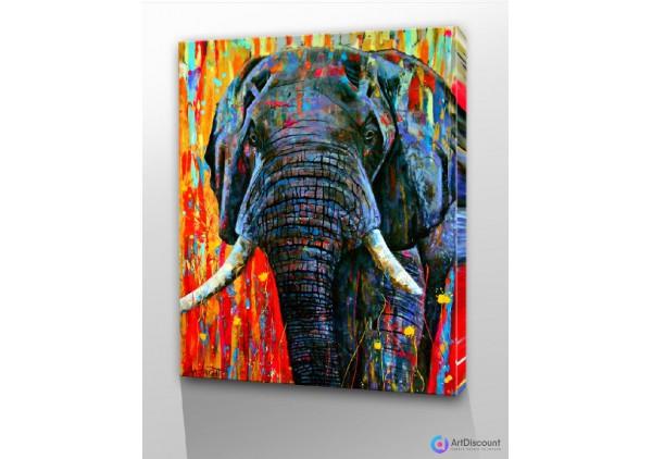 Картины животных Слон AANL0006