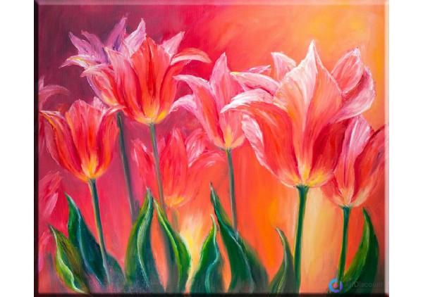 Картина цветы AFLS0014