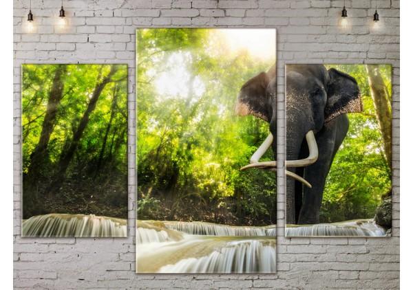 Модульная картина, из трех сегментов со скидкой до -40%, ArtDM0097