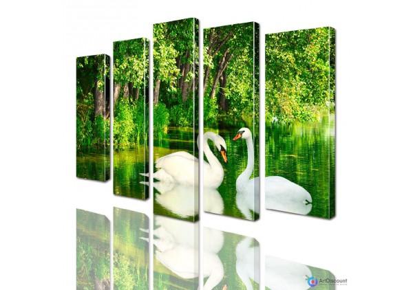 Модульная картина Лебеди AANI5_0008