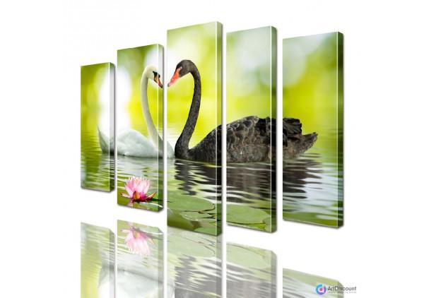 Модульная картина Лебеди AANI5_0021