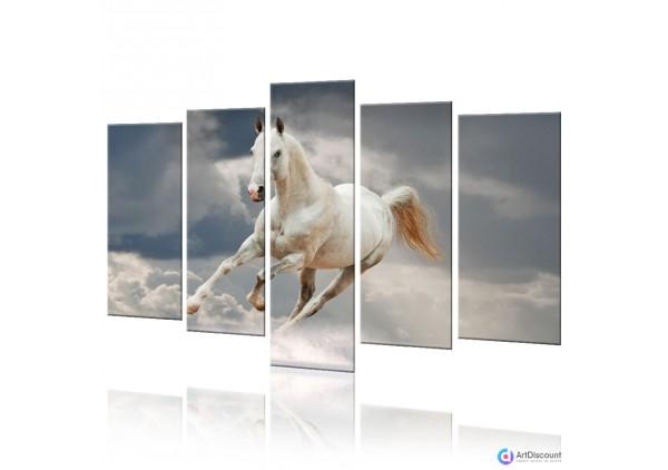 Модульная картина Лошадь AANI5_0024