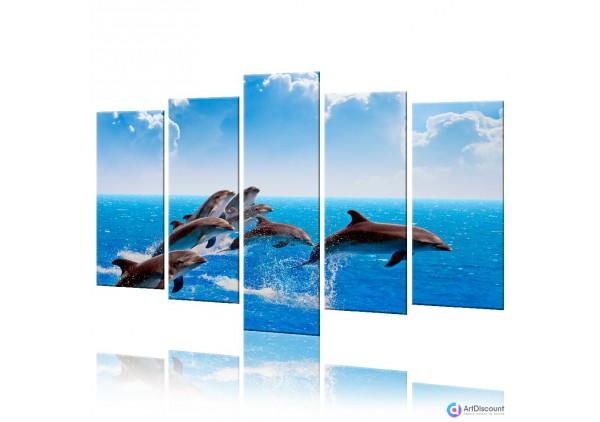 Модульная картина Дельфины AANI5_0026