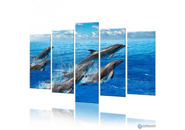 Модульная картина Дельфины AANI5_0027