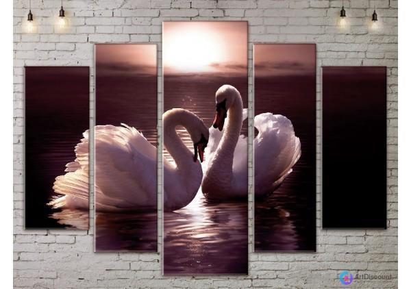 Модульная картина Лебеди AANI5_0051