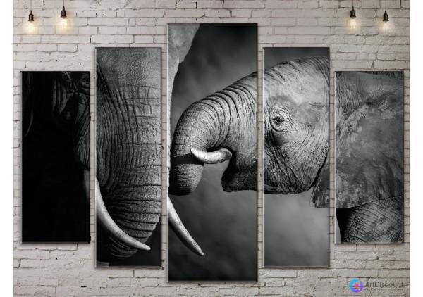 Модульная картина Слоны AANI5_0059