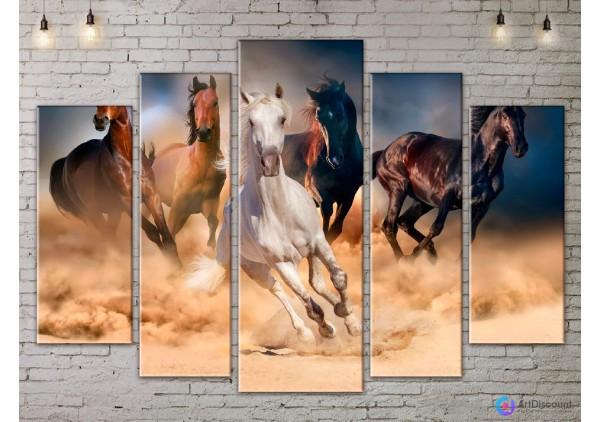 Модульная картина Лошади AANI5_0063