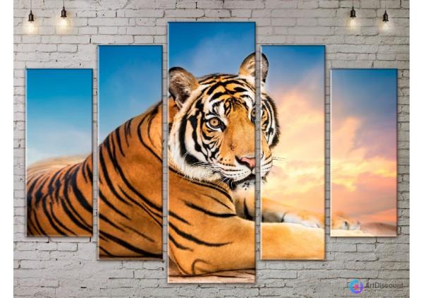 Модульная картина Тигр AANI5_0065