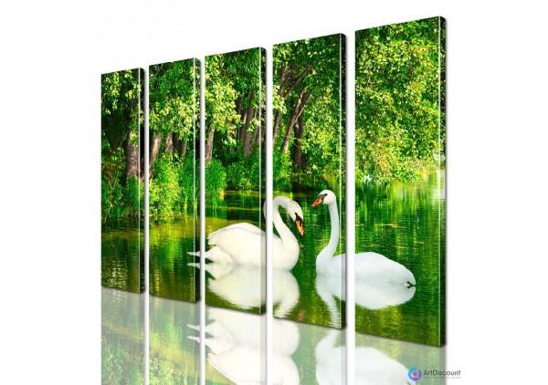Модульная картина Лебеди AANI5_0092