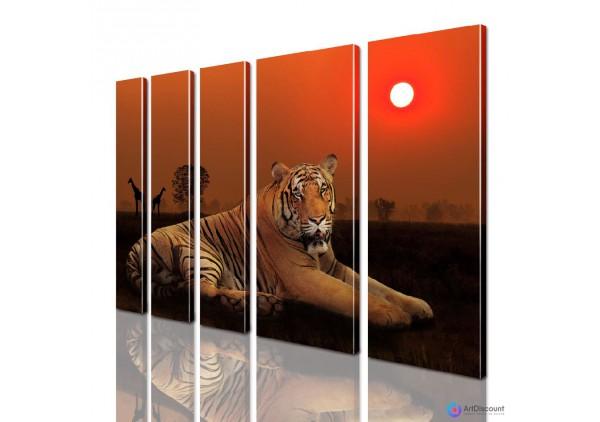 Модульная картина Тигр AANI5_0096