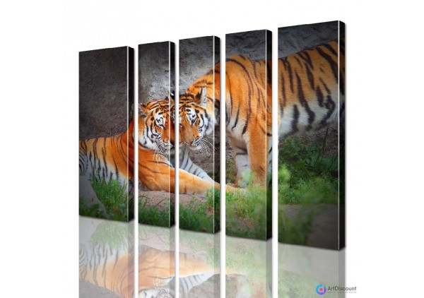 Модульная картина Тигры AANI5_0098