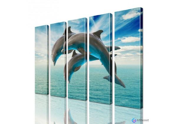 Модульная картина Дельфины AANI5_0100