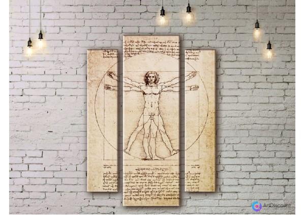 Модульная картина Витрувианский человек ADV0003