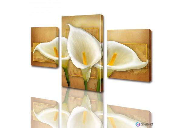 Модульные картины цветы Каллы ADFL0001