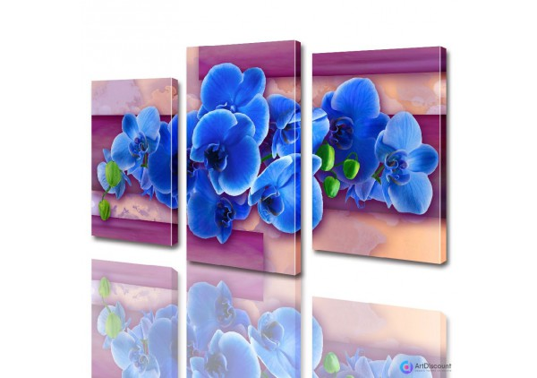 Модульные картины цветы Орхидея ADFL0002
