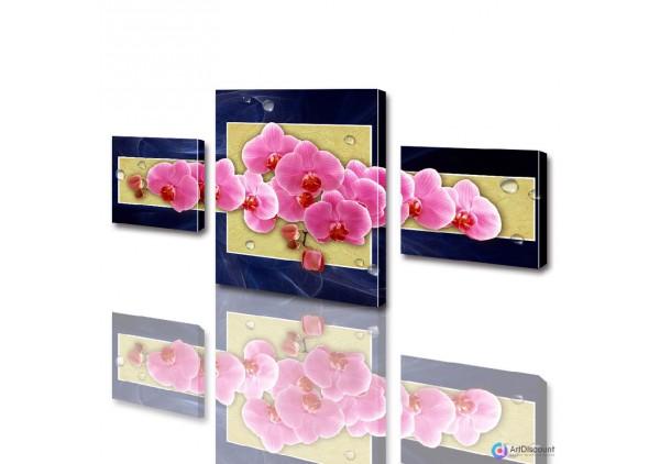 Модульные картины цветы Розовая Орхидея ADFL0003