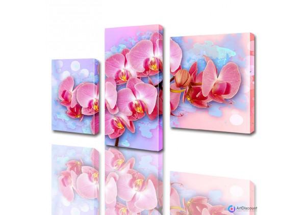 Модульные картины цветы Розовая Орхидея ADFL0006