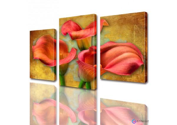 Модульные картины цветы Каллы ADFL0007