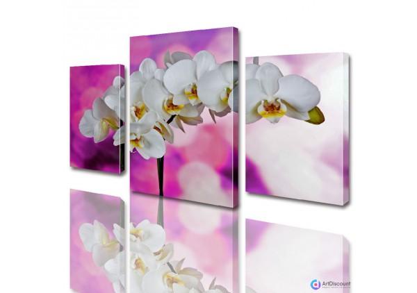 Модульные картины цветы Орхидея ADFL0011