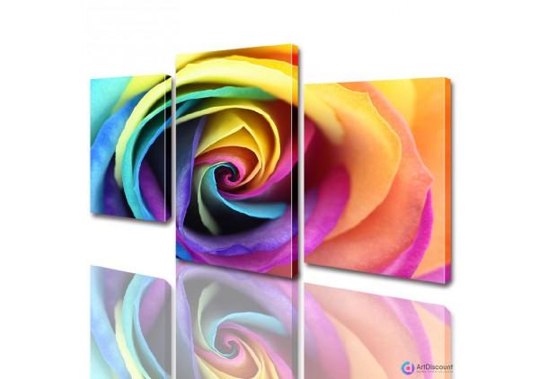 Модульные картины цветы Цветная Роза ADFL0012